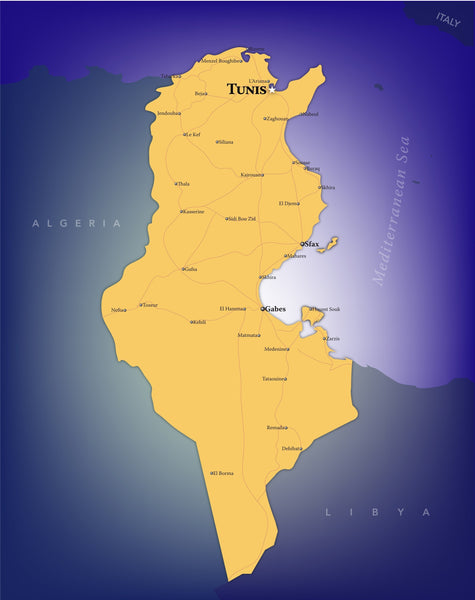Tunisia Wall Map