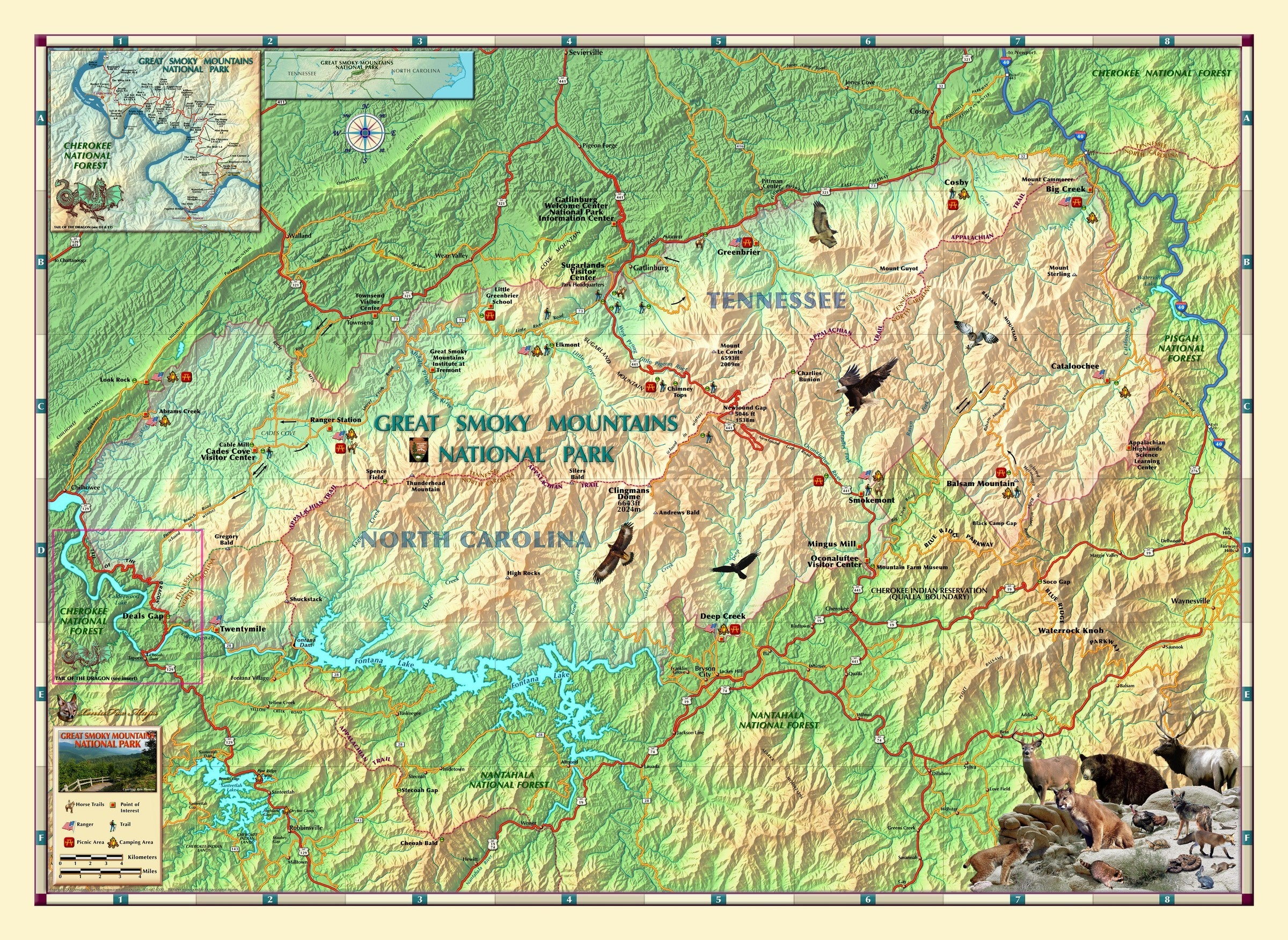 Great Smoky Mountains National Park Wall Map on map of the ozarks, map of great smoky mountains in tennessee, map of the grand canyon, map of the sequoia national park, map of the cumberland plateau, map of the adirondack park, map of the university of virginia, map of the smoky mtns,