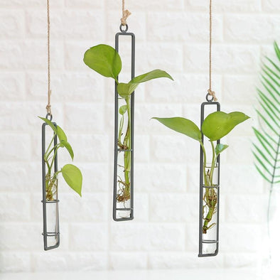 Scha Hanging Metal Glass Test Tube Wall Vase