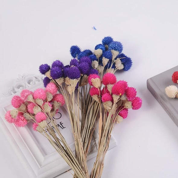 """Round Dried Flowers"" 15 Piece Bundle by Primrose Collections"