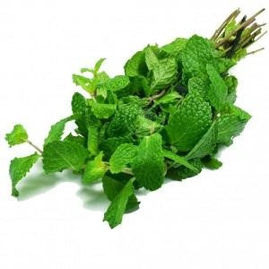 Mint Leaves - rabbit-carrot-gun-market.com