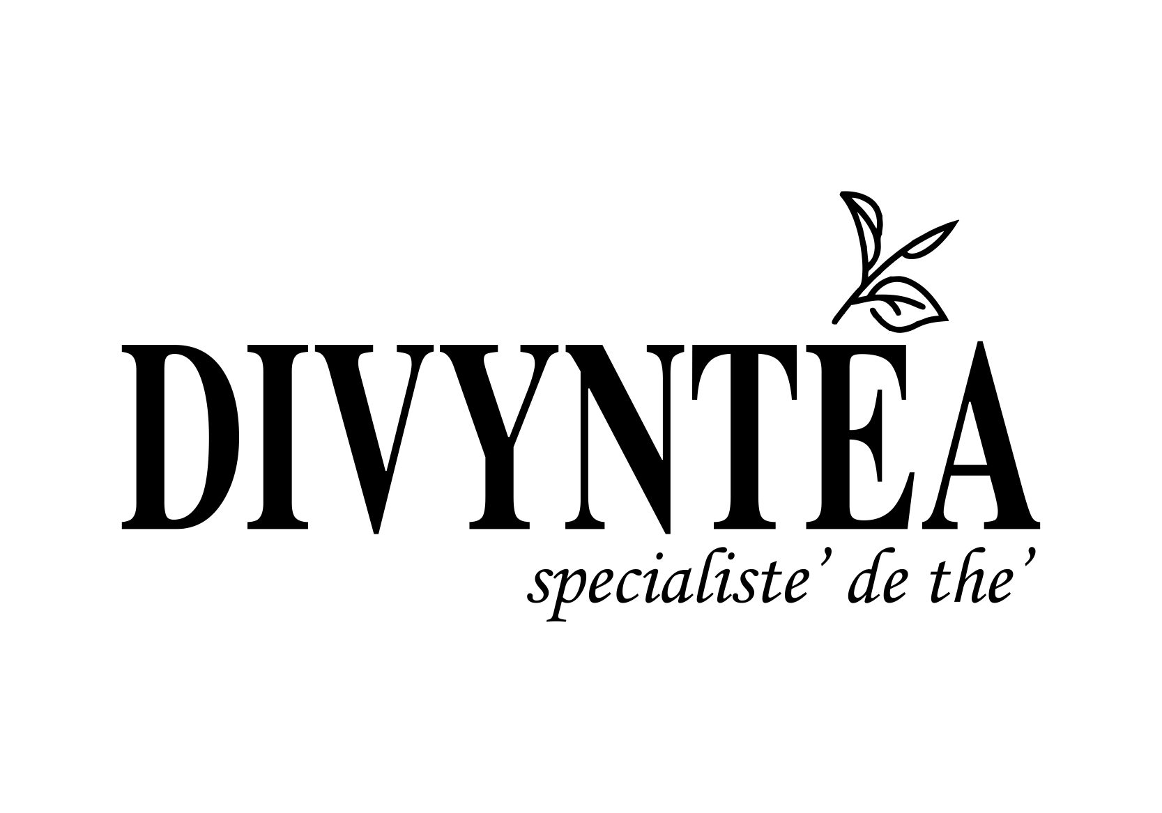 Divyntea - A Unit Of VOGUE EXIM PVT LTD