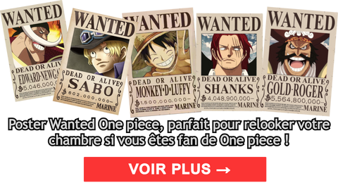 Primes One piece - Wanted   Dimension Manga