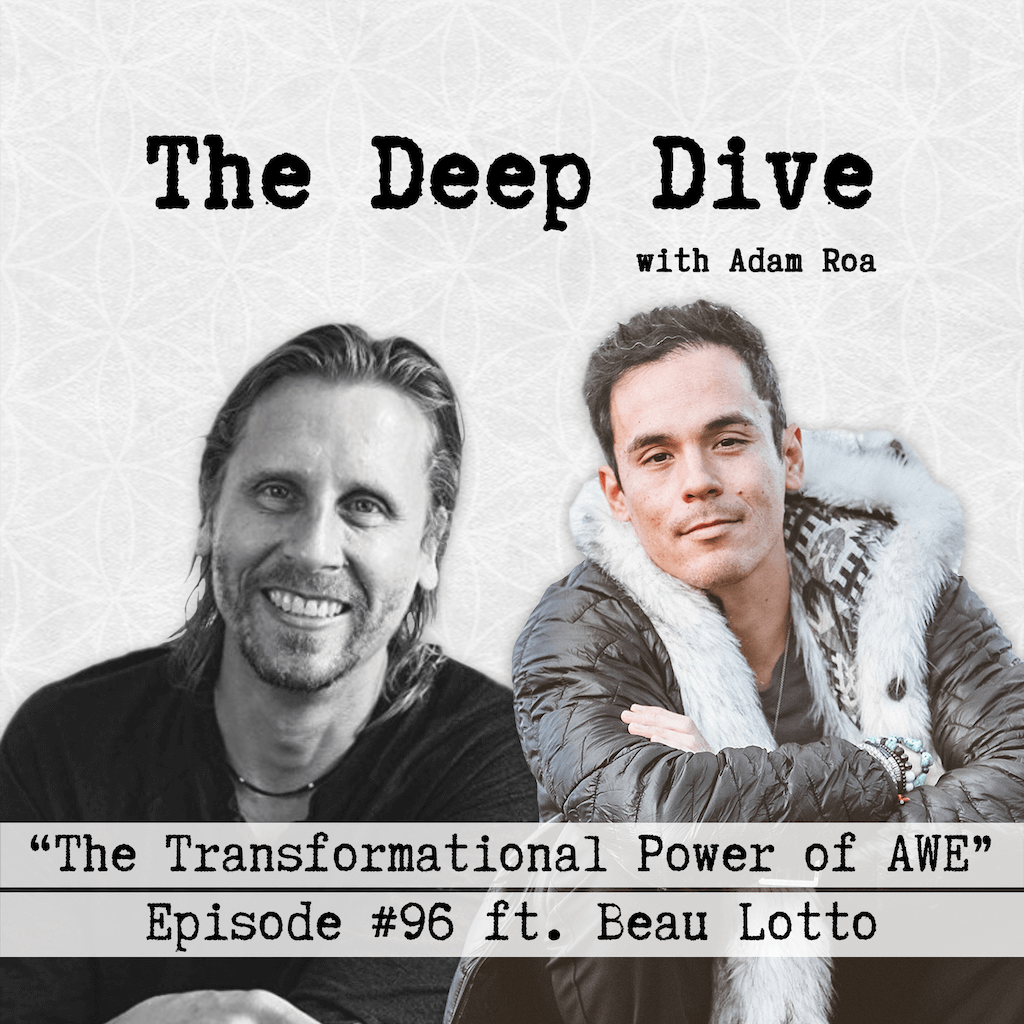 Deep Dive #96 | Beau Lotto - The Transformational Power of AWE