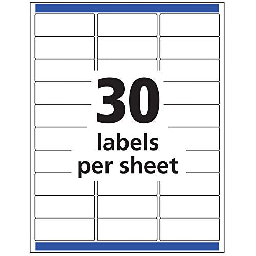 "Avery Matte Frosted Clear Address Labels for Inkjet Printers, 1"" x 2-5/8"", 300 Labels (18660)"