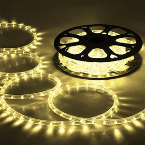 DELight 50 FT Warm White 2 Wire LED Rope Light Outdoor Home Holiday Valentines Party Restaurant Cafe Decoration
