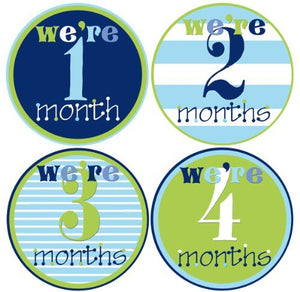 Mumsy Goose Baby Twins Monthly Milestone Stickers 1-12 Months (One Pink/One Blue)