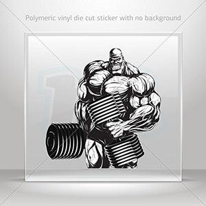 Decal Extreme Bodybuilder Lineart Tablet Laptop Weatherproof Sports Mo (20 X 19.2 Inches)