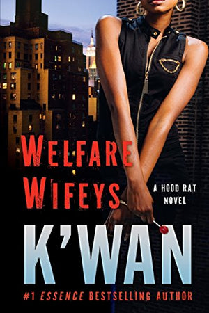 Welfare Wifeys: A Hood Rat Novel (Hood Rat, 4)