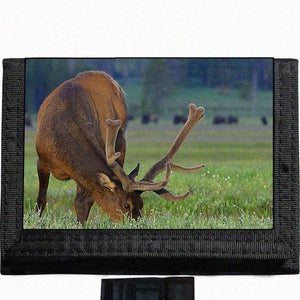 Deer scenic photo Black TriFold Nylon Wallet Great Gift Idea