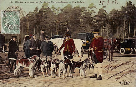 FONTAINEBLEAU-CP07