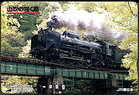JPN224 locomotive