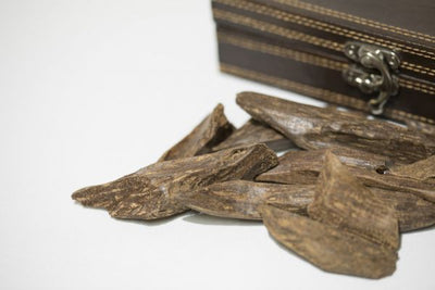 Agadir Men: What is Oud Wood?