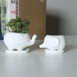 Elephant Ceramic Flower Pot with Tray