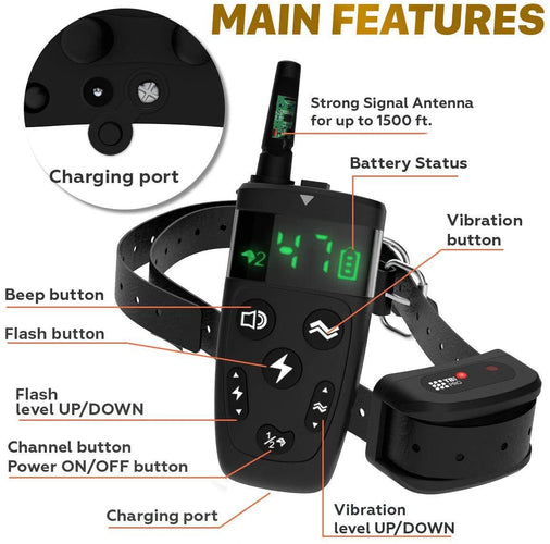 Training Collar with Remote