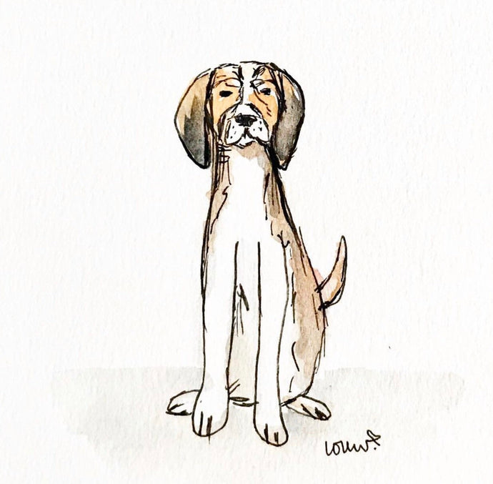 Custom Pup Portrait, Pet Drawing, Ink Illustration, Pet Lover Gift, Archival Quality 5x7