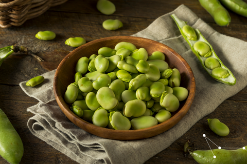 Picture of Fava Beans in a low dish placed on a beige tea towel
