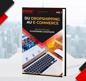 Passer du Dropshipping au e-commerce