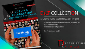 Ebook: Le Scaling, Retargeting et Audiences similaires