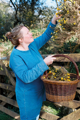 Sian dressed in indigo tuni reaching for yellow gorse flowers in a field