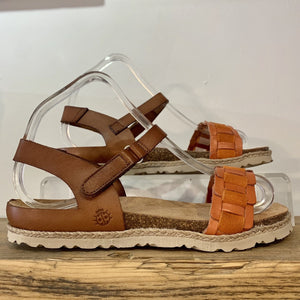Chipre 144 | Candy/Brown