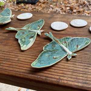 Luna Moth & Moon Wall Decor ~ Wall Hanging