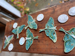 Load image into Gallery viewer, Luna Moth & Moon Wall Decor ~ Wall Hanging