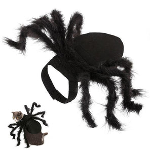 50% OFF TODAY! Spider Costume for Pets 【BUY 2 FREE SHIPPING】