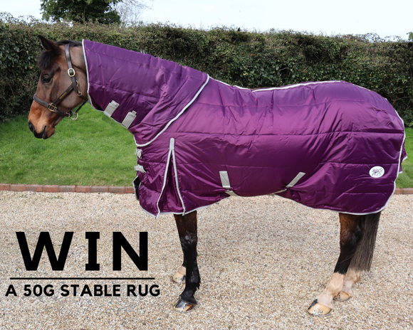 🎉 WIN A 50G SWISH STABLE RUG 🎉⁠