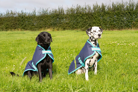 Waterproof Dog Coats Blog Feature