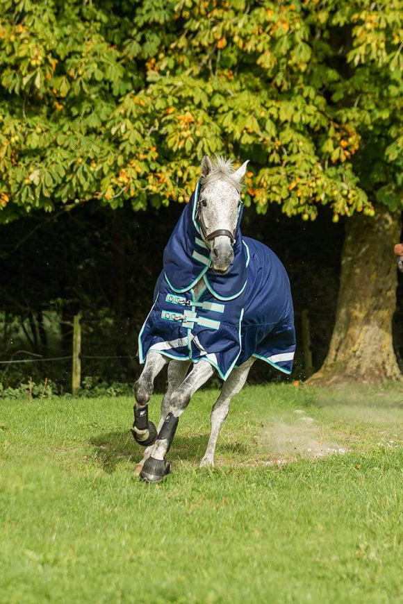 Advice For Choosing The Best Winter Turnout Rug