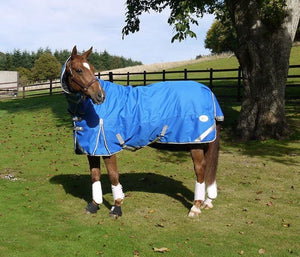 50g Detachable Neck Turnout Rug - Royal - Swish Equestrian