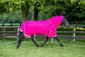 100g Detachable Neck Turnout Rug - Pink - Swish Equestrian