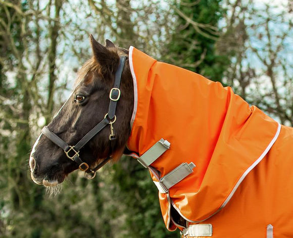 50g Orange Turnout Rug Neck Cover - Swish Equestrian