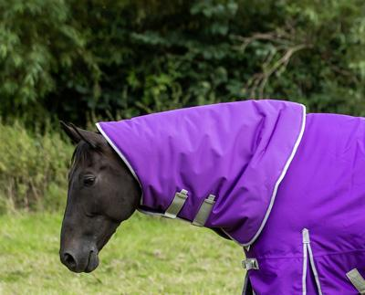 50g Purple Turnout Rug Neck Cover - Swish Equestrian