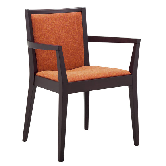 Suntey Arm Chair 2