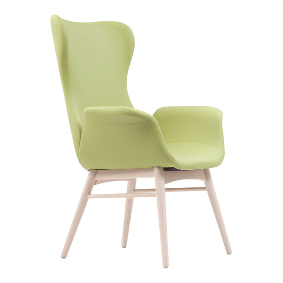 Aska Arm Chair