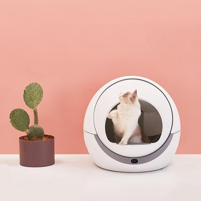 Automatic Litter Box for Cats - PetNow
