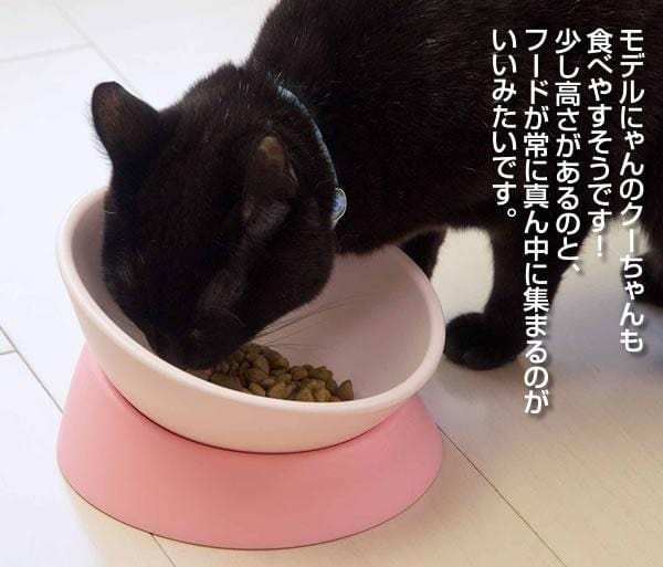 Detachable Rubber Pet Bowl for Cats and Dogs - PetNow