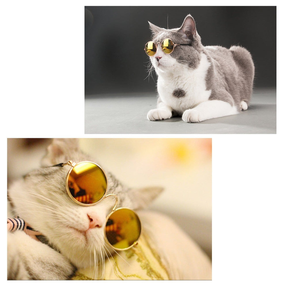 Classic Pet Sunglasses for Cats & Small Dogs - PetNow