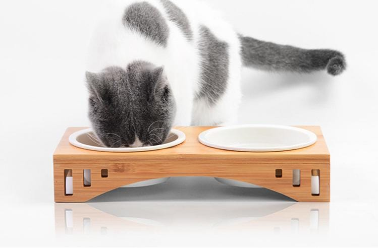 Ceramics Bowl with Bamboo Stand for Dog/Cat - PetNow