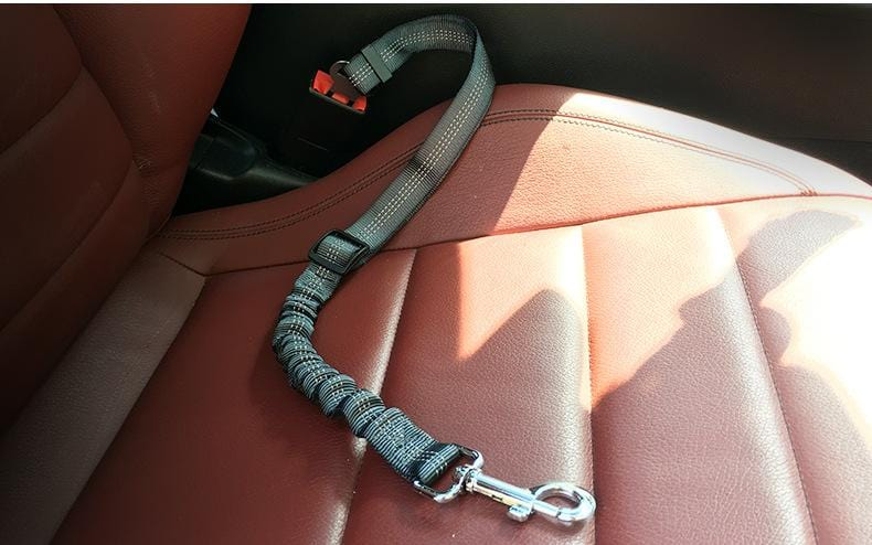 Easy-Click Seatbelt Adapter for Pets - PetNow