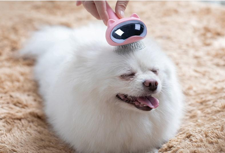 Pet Grooming Brush - PetNow