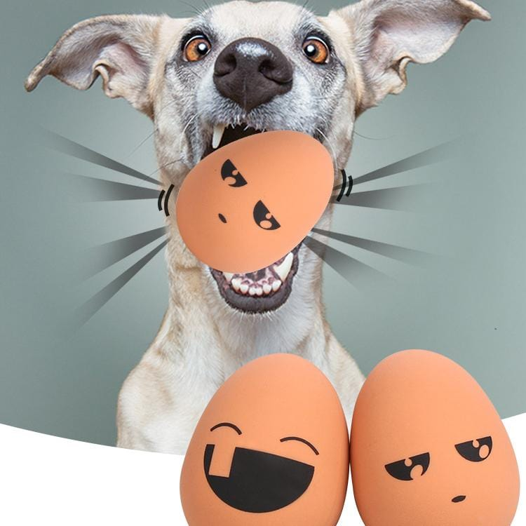 Bouncing Egg Dog Toy - PetNow