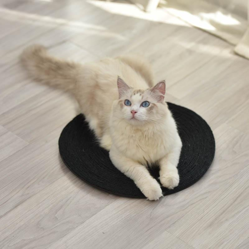 Sisal Scratching Mat for Cats - PetNow