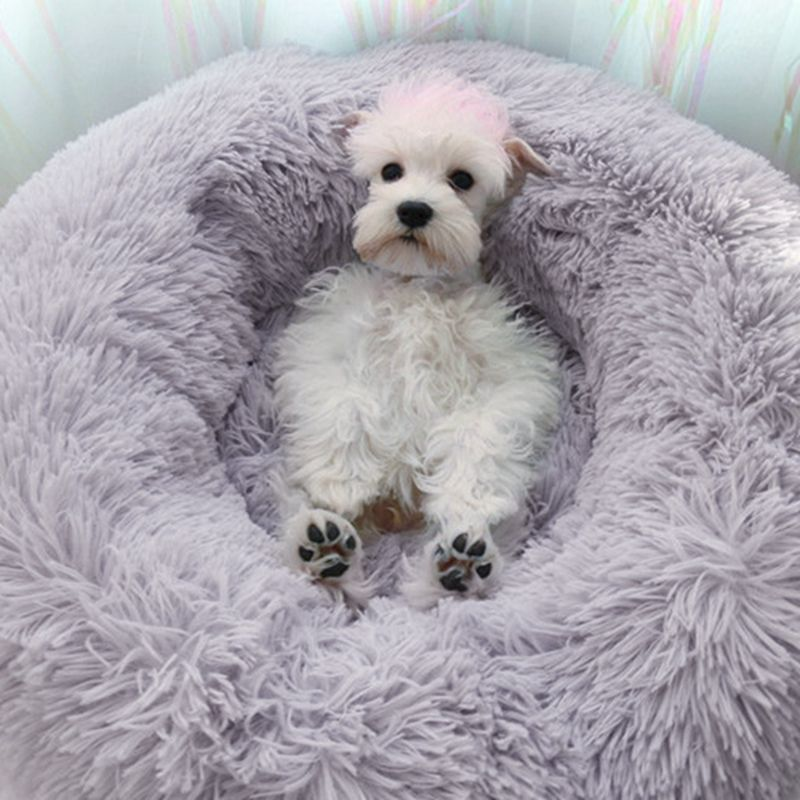 Modern Fluffy Dog Bed with Anti-Anxiety