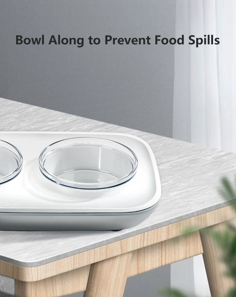 Elevated Dual Pet Feed Bowl - PetNow