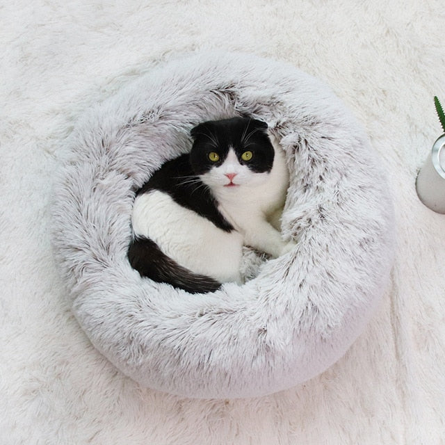 Super Cozy Pet Bed - PetNow