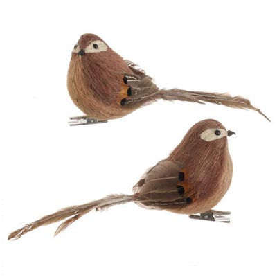 3252358-clip-on-brown-feathered-birds-set-2