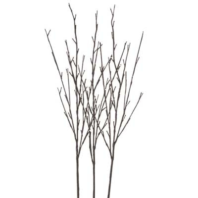 m3000900-brown-lighted-branches